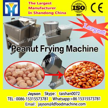 Popualr Continuous Industrial Namkeen Samosa Gari Pani Puri Deep Fryer Onion Ring Frying Machine