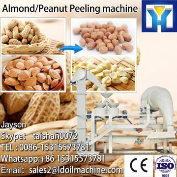 Full 304 stainless steel mango denucleation and pulper machine