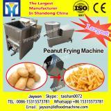 Electric Factory Price Conveyor Deep Onion Chicken Gari Fat Frying machine Tornado Potato Chips Commercial Fryer